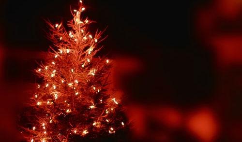 Artikelbild zu Artikel Weihnachtsgrüße
